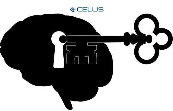 Human brain as role model: Deep Learning
